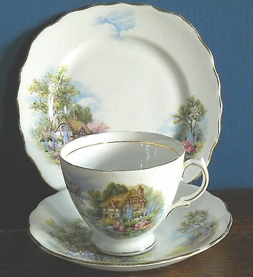 A Vintage Royal Vale bone china trio in Cottage Garden pat no 7382