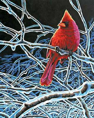 Paint By Number Kit 11 Inch X 14 Inch-Ice Cardinal 088677914325