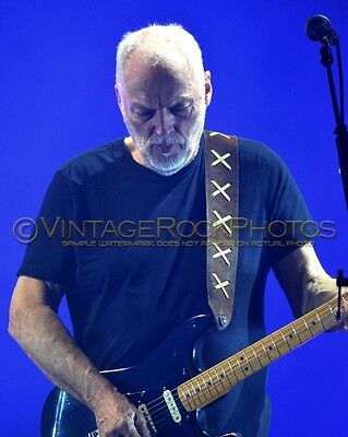 David Gilmour Photo 8x10 inch 2016 MSG NYC NY Rattle That Lock Concert Tour 170