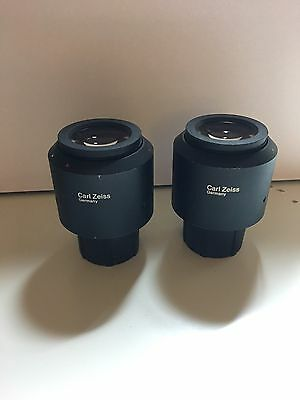 Carl Zeiss Germany W-PI 10x/23 45 50 44 (Pair)