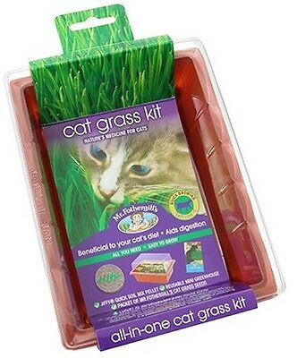 Cat Grass Seed Raiser Kit - Nature's Medicine for Cats