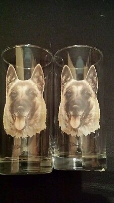 Belgian Shepherd Drinking Glass Pair