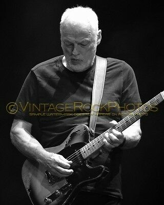 David Gilmour Photo 8x10 inch 2016 MSG NYC, NY Rattle That Lock Concert Tour 60b