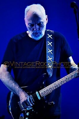 David Gilmour Photo 8x12 inch 2016 Concert Tour Ltd Edition Art Design Print 185