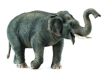Collecta Animali Selvaggi Wild Life Elefante Asiatico Asian Elephant 88486