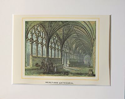 Hereford Cathedral Cloisters - Antique Colour Print Engraving Lithograph