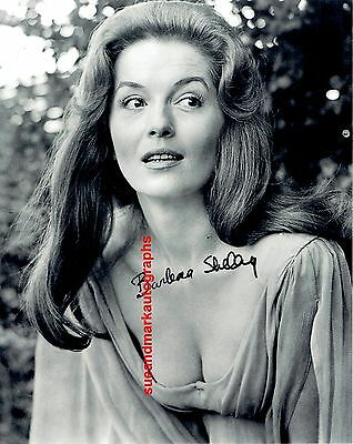 Barbara Shelley Helen Dracula Prince Of Darkness Cleavage    Autograph UACC RD96