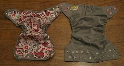 Set of Two Cloth Adjustable Diapers (1 Pink Gray Paisley) 1 Solid Gray