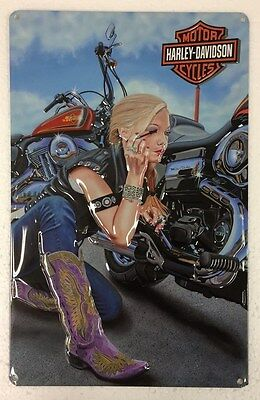 Ande Rooney HARLEY DAVIDSON FINISHING TOUCH Girl Motorcycle HD Garage Tin Sign