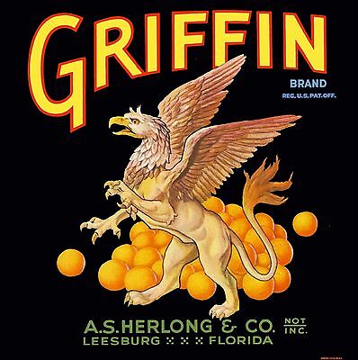 Leesburg Florida Griffin Brand Orange Citrus Fruit Crate Label Art Print