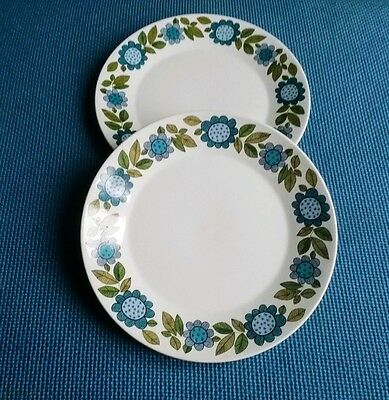 """J & G Meakin Ironstone Tableware *topic* Two 10"""" Dinner Plates ##very Good##"""
