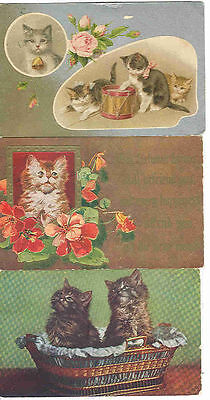pc7439 postcard Cats THREE All Different All postally used