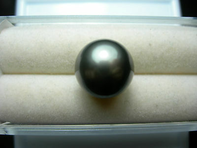 rare Cook Islands Black Grey Pearl LOOSE South Seas Cultured Round undrilled b