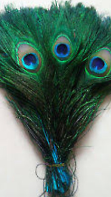 5pcs Blue dyed 24-30cm Natural Peacock Eye Feathers DIY Art Craft Millinery Vase