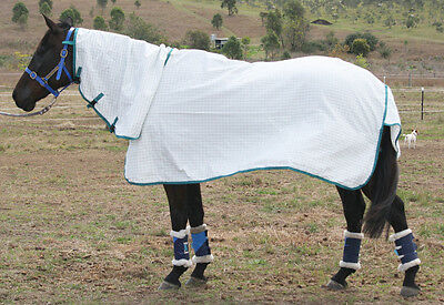 "6'0"" Ripstop Cotton Emerald Green Summer Clearance Horse Combo Rug"