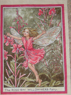 Flower Fairies Cotton Fabric Panel ~ 25 x 18cm ~ The Rose Bay Willow Herb Fairy