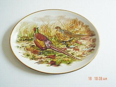 Liverpool Road Pottery Ltd Oval Pheasant Plate #2