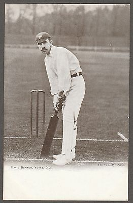"DAVID DENTON (Yorkshire CCC) printed postcard... The ""Dainty"" Series"