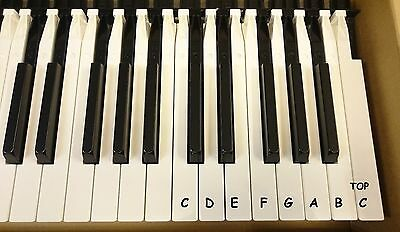 YAMAHA Clavinova  Replacemet Keys CLP  CVP Series P120 - Motif8 . NEW IN PACK