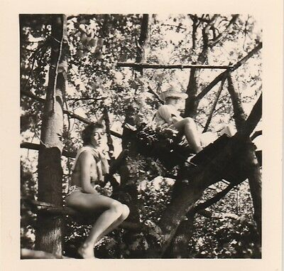 Vintage Photo woman lady in bathing suit sits in tree   #992