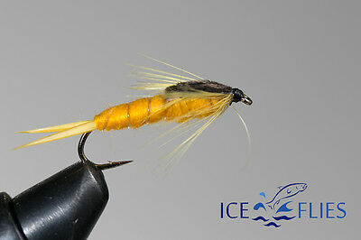 ICE FLIES Nymph. Stone fly Gold . (4-pack). Available in size 8 - 16