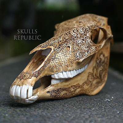 CARVED HORSE SKULL, Real Animal Head Carving Desk Decor, Unique Gift for Him
