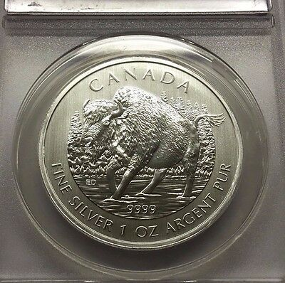 2013 $5 Dollar Anacs Ms70 Canada Bison Buffalo Silver Oz. Certified * Free Ship