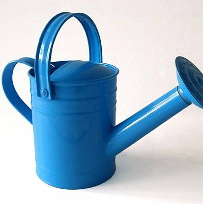NEW Twigz Watering Can - Blue