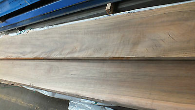 SPOTTED GUM 300X35 $60mt stair treads Solid not Joined Table top bench beam slab