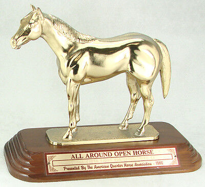 American  Quarter Horse Association Trophy - 1986 All Around Open Horse