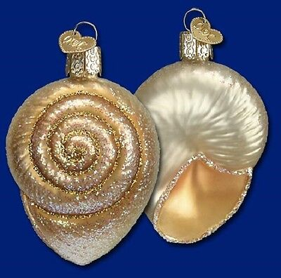 """Spiral Shell"" (12289) Old World Christmas Glass Ornament"