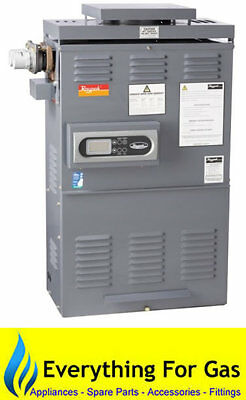 Raypak 127 Premium Gas Pool and Spa Heater - LPG or Natural Gas