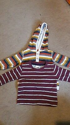 2 boys long sleeved tops 3-6 months