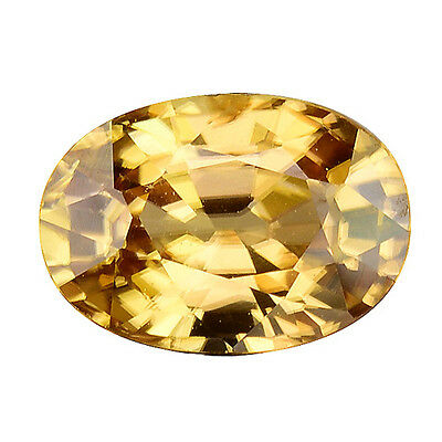 1.595Cts Brilliant Luster Yellow Natural Zircon Oval Loose Gemstones