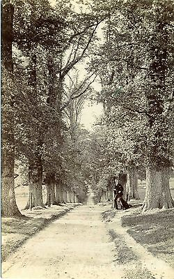 Vallis Avenue, FROME, Somerset RP by Bell
