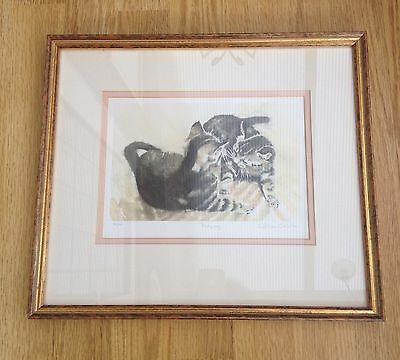 'playing' Cats/kittens By Gillian Carolan-Signed Limited Edition Framed Print