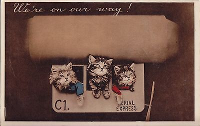 Hot Air Balloon Squeeze Squeaky Cats Card c.1910/20