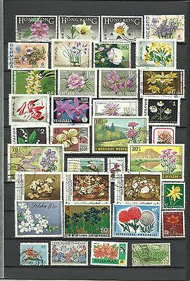 Thematics, FLOWERS, nice mixed collection incl. unusual ones, 4 scans, all shown