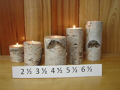 ~5 Rustic White Birch Log Candle Holders~ 2 1/2 to 3 in. in diameter~