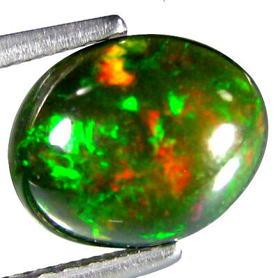 1.515Cts Attractive Red Multi Color Black Natural Ethiopian Opal Oval