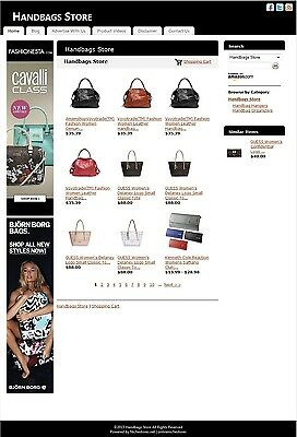 Handbags Store -Established Affiliate Website Business