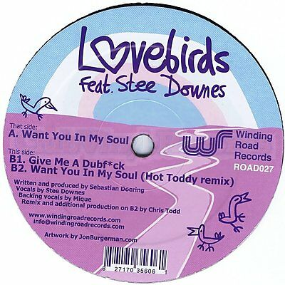 """NEW 12""""  /  Lovebirds feat. Stee Downes – Want You In My Soul - ROAD027"""
