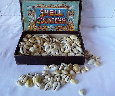Edwardian Cowrie Shell Counters
