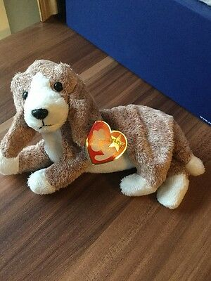 Ty Beanie Baby Sniffer The Dog With Tag