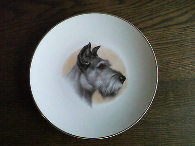 "Fenton china 8"" plate with schnauzer head decoration."