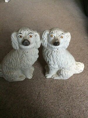Antique Staffordshire Pair Of Pot Dogs