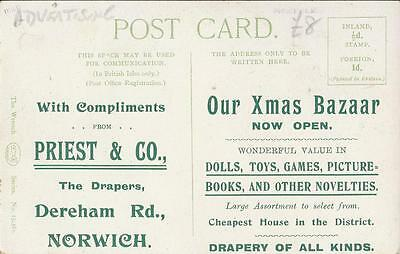 Norwich Advert - Rear Of Card Of Dingwall Monument