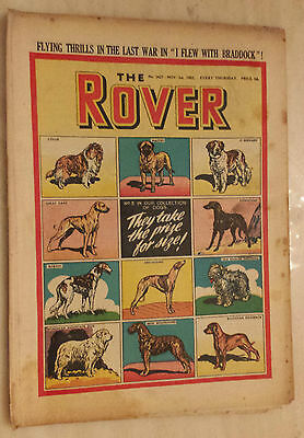 Comic- THE ROVER, No.1427, 1st November 1952 - THEY TAKE THE PRIZE FOR SIZE !