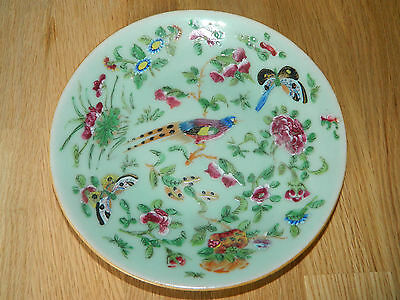 Antique Chinese celadon pottery plate with hand paint bird butterflies & flowers