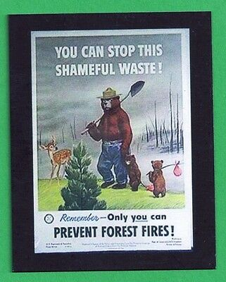 USFS US Forest Service Smokey Bear Collectible Poster Magnet - 1950 Poster # 15